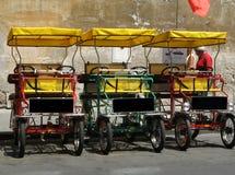 旅游出租运输在比萨,意大利镇  免版税图库摄影