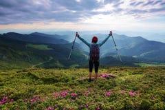旅游女孩用后面大袋和跟踪棍子在桃红色杜鹃花中灌木的草坪停留  免版税库存图片