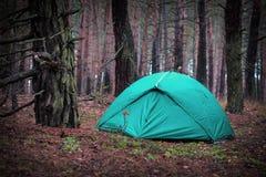 旅游帐篷在森林里 免版税库存图片