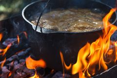 旅游常礼帽用在篝火的食物,烹调在远足,室外活动 肉饭的准备 免版税图库摄影