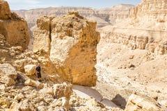 旅游常设沙漠峡谷山风景视图 库存图片