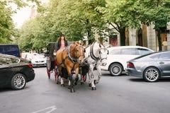 旅游支架由两匹马拉扯了并且由妇女带领了 免版税图库摄影