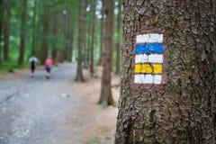 旅游标志/标记在树 免版税库存照片