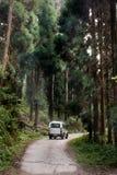 旅游汽车在Lolegaon国家公园 免版税库存照片
