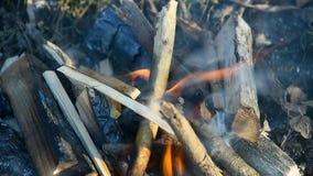 旅游火在冬天 生存 影视素材