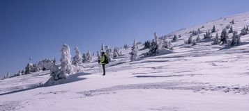 旅游看在令人惊讶的冬天风景 免版税库存照片