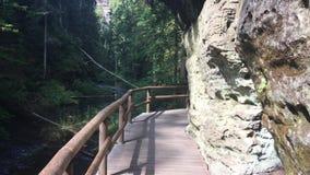 旅游道路在岩石和美好的绿色中的森林里 捷克瑞士国立公园,大岩石 股票视频