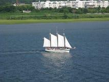 旅游风船查尔斯顿港口南卡罗来纳 免版税库存图片