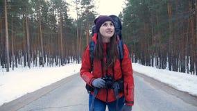 旅游` s步行在森林里 影视素材
