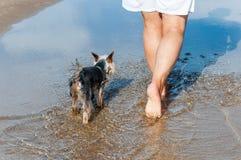 旅行与狗的妇女 免版税库存图片