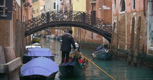 旅行乘在威尼斯运河的长平底船 股票视频