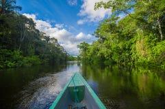 旅行乘小船入亚马逊密林的深度在Cuyabeno国家公园,厄瓜多尔 免版税库存图片