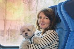 旅行乘有他的所有者的火车的狗 免版税库存图片