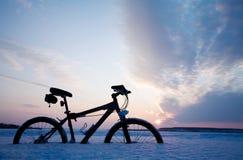 旅行冬天 免版税库存照片