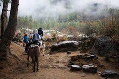 旅行到Taktshang Goemba的人们由马 免版税库存照片