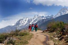 旅行印度 库存照片