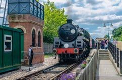 旅行及时在会开蓝色钟形花的草铁路的在东部Grinstead在夏天 免版税库存图片
