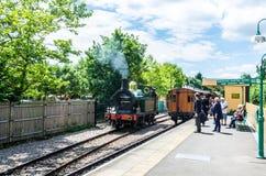 旅行及时在会开蓝色钟形花的草铁路的在东部Grinstead在夏天 库存图片
