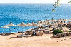 旅行和休闲,阳伞,在蓝色海的背景的太阳床 免版税图库摄影