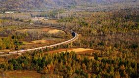 旅行在巨大森林里的俯视火车 库存照片