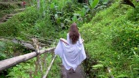 旅行在巴厘岛 礼服的妇女走在热带森林公园的 影视素材