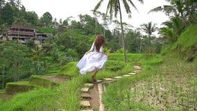 旅行在巴厘岛 运行在米大阳台轨道的长的礼服的妇女 影视素材