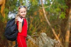 旅行在森林里 免版税库存图片