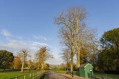 旅行在Hotham公园, Bognor Regis,英国 免版税图库摄影