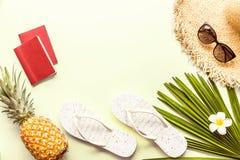 旅行平的被放置的项目:两本护照、新鲜的菠萝、太阳镜、海滩拖鞋、热带说谎在绿色的花和棕榈叶 免版税库存图片