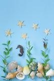 旅行样式由海壳制成品种  免版税库存图片