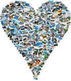 旅行照片照片拼贴画-马赛克心脏 库存图片