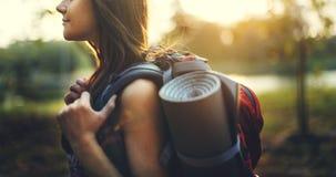 旅行癖鸽子旅客生活方式自然旅行概念 库存图片