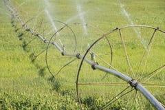 旅行的洒水装置,灌溉的庄稼 库存图片