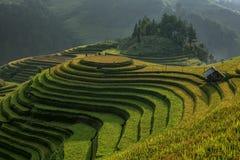 旅行目的地米大阳台,越南 免版税库存图片