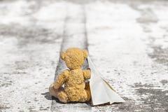 旅行臭虫熊 免版税库存照片