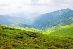 旅行,迁徙,自然 庄严,高绿色山 水平的框架 库存图片