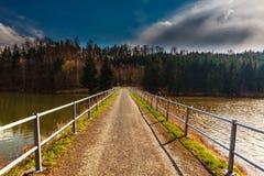 旅途通过横跨导致森林的桥梁的一个水坝 免版税库存图片