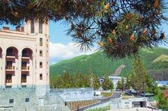 旅馆凯悦地方杰尔穆克 山的看法,通过杉木分支与锥体的 的臂章 免版税库存照片