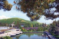旅馆凯悦地方杰尔穆克 观点的Dolphin湖、山、桥梁、天空和杉木分支 的臂章 库存照片