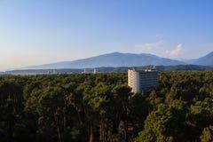 旅馆大厦围拢与杉树附近的高加索山脉 免版税库存图片