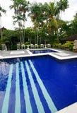 旅馆池热带手段的游泳 免版税库存照片