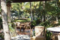 旅馆苦楝根皮Cayo圣玛丽亚-古巴 图库摄影