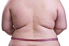 旋转女孩脂肪团和肥胖病 库存照片