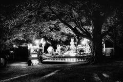 旋转木马在一棵树下在公园 库存照片