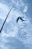 旋转的风筝 库存照片
