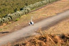 旋转直升飞机登陆 免版税图库摄影