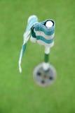 旗子和高尔夫球孔 免版税图库摄影