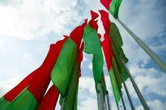 旗子白俄罗斯 免版税库存图片