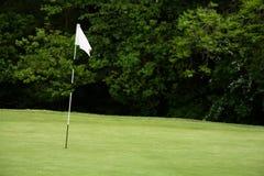 旗杆高尔夫球 库存照片