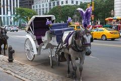 无人骑乘的马和支架 免版税库存图片